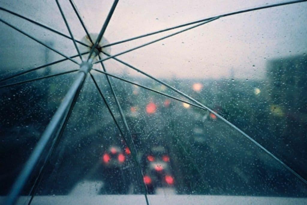 Прохладная погода с дождями ожидается на этой неделе