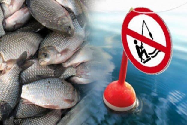 весенний запрет на рыбалку в саратове