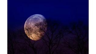 Розовая луна: когда наблюдать самое яркое явление года