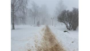 Оттепель… Погода на ближайшие дни